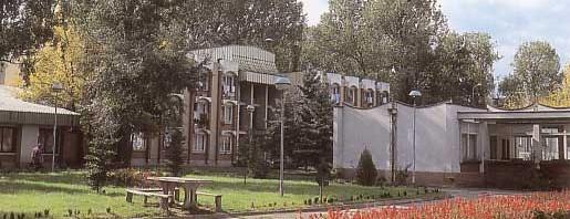 Palanački Kiseljek Srbija